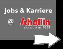 Schollin Jobs & Karriere